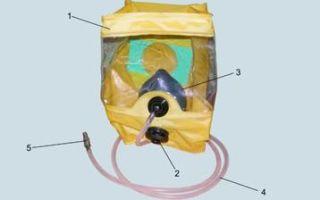 Дыхательный аппарат человека — для студента