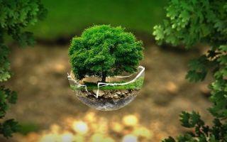 Экология россии — для студента