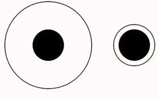 Иллюзии восприятия — для студента