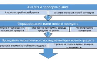 Этапы вывода нового продукта на рынок — возможные трудности и этапы