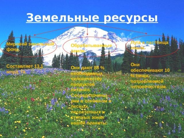 Мировые природные ресурсы - Для студента