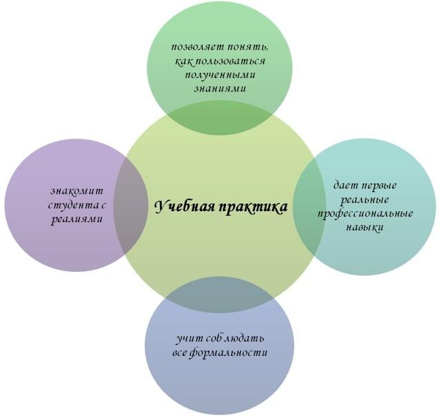 Как написать отчет по практике - примеры и правила - Для студента
