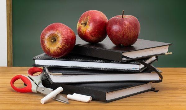 Задачи и структура трудового права, функции трудового права - Для студента