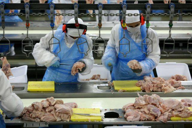 Пищевая промышленность России - Для студента