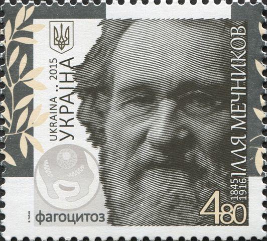 Илья Ильич Мечников, русский биолог, культурный деятель, мыслитель - Для студента
