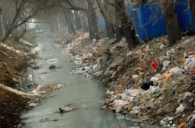 Экологические проблемы мира - Для студента